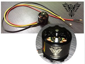 Phoenix Flight Gear Edition Avroto M2814P 770kv Brushless Motor